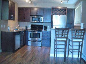 Fully Furnished 1-BDR Apartment Killarney Downtown Calgary