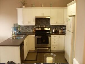 2 Bedrooms For Rent In Fully Furnished Newer Home All Inclusive London Ontario image 4