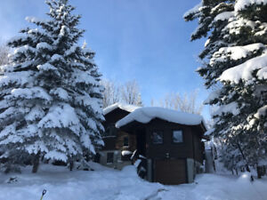 Blue Mountain Ski Chalet Rental Available for March and April