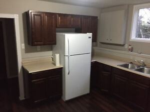Three Bedroom Basement Apartment - Heat Included