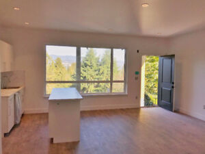 BRAND NEW 2 BEDROOM MOUNTAIN VIEW SUITE