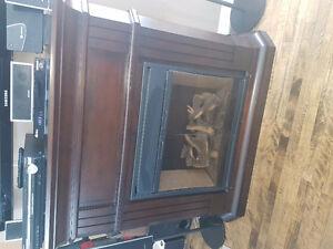 Foyer électrique / electrical fire place