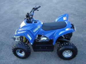 ATV, Quad, Buggy, 110cc, Automatic, 4 Stroke Thornton Maitland Area Preview