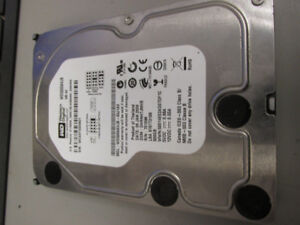 (Lot of 5) Western Digital 500GB Internal Hard Drive 7200RPM