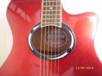Guitar & Amplifier