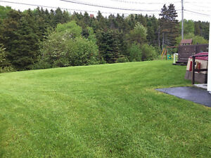 Any sod work or landscaping needs . No job to big or to small. St. John's Newfoundland image 2