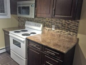 Renovated 2 Bedroom Heat and Hot water included
