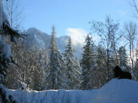 Mountain Cottage above Slocan Lake available for WINTER RENTALS