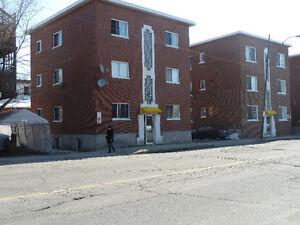 3 1/2 Québec (Sillery) Université Maguire Mai, juin ou juillet