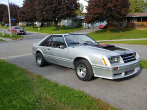 1979 Mustang gt for sale or trade
