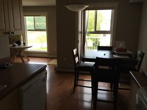 1 unfurnished &,1 furnished Apartment; Down Town Peace River