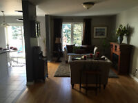 Whitby Shores House with Walk out Basement for Rent
