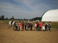 Micro Camps: Horse riding for kids 4+ yrs old