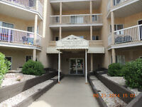 One rooms in a large 3 bedroom apartment - Clareview