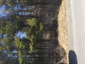 27.62 acres for Sale Branch Rd North Augusta