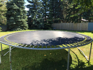 Trampoline 12 ft with new mesh. 100$