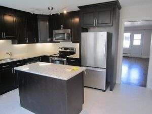 Cote St Luc Lower Duplex fully renovated available with Parking