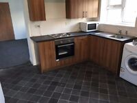 Lovely large 2 bedroom flat for rent near Swansea city centre