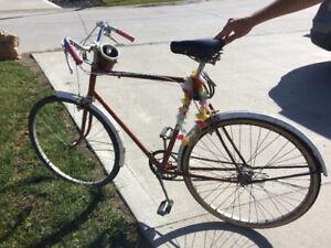 Vintage bikes for sale. 1950s men triumph. 1970s ladies cruiser