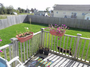 Antigonish – 3bdr 1.5bath-- fenced yard, huge rec room,  more