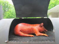 Summer student wanted for pig roast help