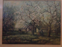 70+ years old LITHO