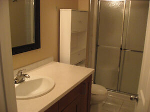 Peace River 2 bedroom 2 bathroom for rent.