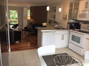 one bedroom contemporary apartment - reduced.