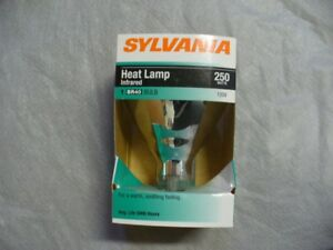 Heat Lamp Bulbs (6)