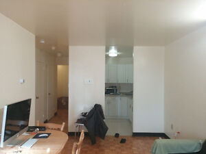 Spacious 1 bedroom apt winter sublet (+option for summer) Kingston Kingston Area image 10