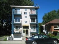 Grand 4-1/2 Renove a Louer / Large Renovated 4-1/2 for Rent