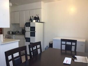 1 BR apartment available immediately