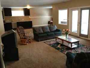 Room for rent in walkout basement