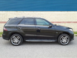 2012 mercedes benz ml 350 bluetech