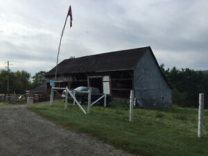 WE PAY UP TO 10K FOR YOUR OLD BARN! Cornwall Ontario image 3
