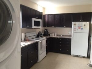 LG/inclusive/renovated 3br downtown great location