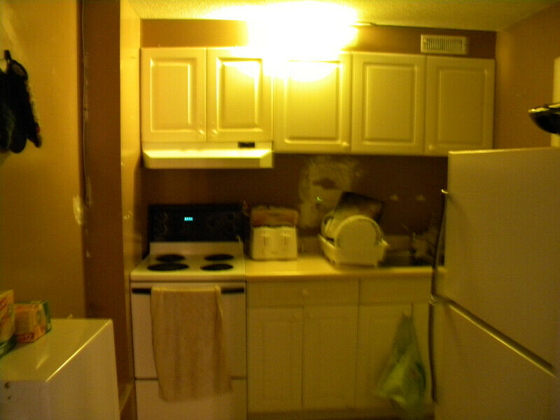 1 Bedroom Apartment- unlimited WiFi- inclusive $1250/m ...