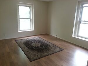 Nice, Bright 2 Bdrm Apt. Dwntwn East $900 All Incl.