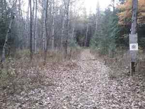 100 Acres for sale outside mount forest  Kitchener / Waterloo Kitchener Area image 8
