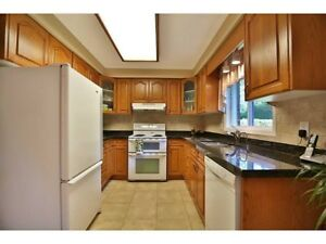 Kitchen cabinets for sale! Granite counter, sink and faucet incl