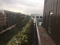 Double en-suite in friendly flat share with massive roof terrace over looking London skyline