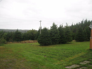 beautiful 3 beds/2 baths on private lot O'Donnell's, SMB, NL St. John's Newfoundland image 9
