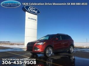 2015 Ford Escape SE  PST Paid, Well Maintained, Local Trade!