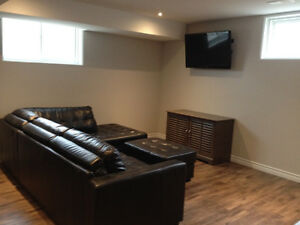 Clean Bright Furnished North End Basement Apartment
