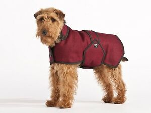 Small dog coats 50% OFF!!