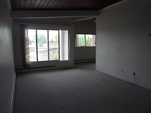 SOUTH CENTRAL LARGE 2-BEDROOM APARTMENTS - FREE INTERNET