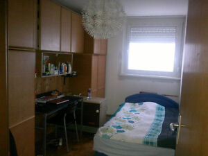 WANTED 1 BEDROOM APT IN CORNWALL AREA