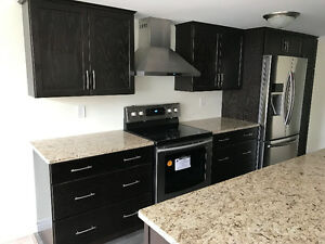 2 BD condo im dowtown Windsor