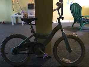 Vélo de la reine des neiges 18 po