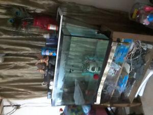 Aquarium  with pump 30 gal. ( pending P.U.  )